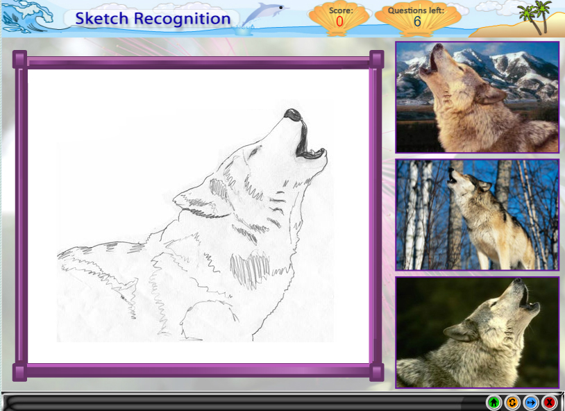 Sketch Recognition